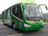 Novo onibus do Palmeiras.jpg
