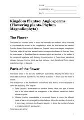 Lab manual # 8.pdf