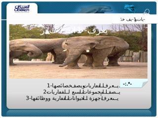عرض الدرس الثاني الحيوانات الفقاريّة.ppt